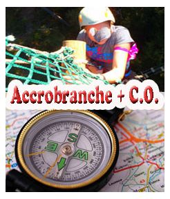 Accrobranche + C.O. Jeunesse