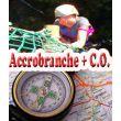 C.O. + Accrobranche. Jeunesse