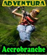 Accrobranche - 18 ans -1m40