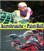 Accrobranche + Paint-ball