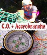 C.O. + accrobranche